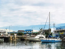 Boats at Bridgetown Barbados by Susan Savad