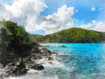 Caribbean - Rocky Shore St. Thomas by Susan Savad