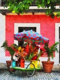 Flower Cart San Juan Puerto Rico by Susan Savad