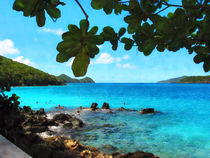 Peaceful Beach St. Thomas by Susan Savad