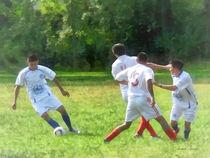 Soccer Ball in Play von Susan Savad