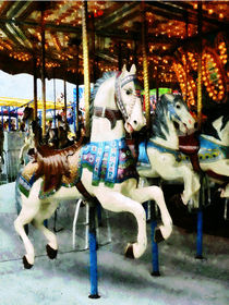Carousel Horses by Susan Savad