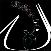 Flower in white by jopelim