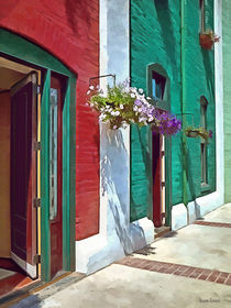 Roanoke VA - Doors and Hanging Baskets by Susan Savad