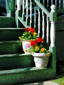 Geraniums and Pansies on Steps by Susan Savad