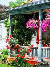 Hanging Baskets and Climbing Roses von Susan Savad