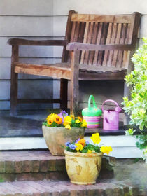 Pansies and Watering Cans on Steps von Susan Savad