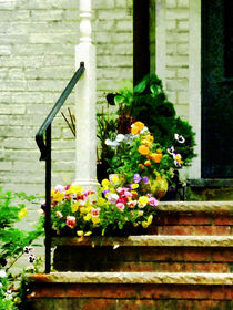 Pansies on Steps by Susan Savad
