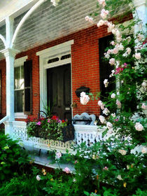 Porch With Climbing Roses by Susan Savad