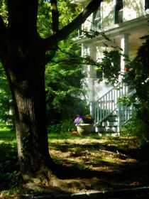 Porch With Pot of Chrysanthemums von Susan Savad