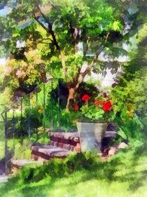 Pot of Geraniums Near Steps by Susan Savad
