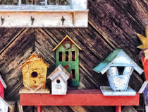 Birdhouses for Sale von Susan Savad