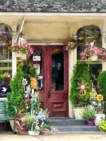 Strasburg PA - Flower Shop With Birdhouse by Susan Savad
