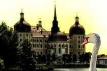 Der Schwan von Moritzburg von Chris Berger