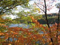 Herbstspaziergang von Giseltraud van Doeselar