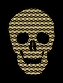Panel Skull by Renato Sette