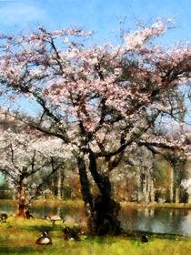 Geese Under Flowering Tree von Susan Savad