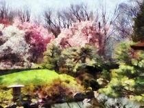 Japanese Spring by Susan Savad