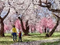 Lovely Spring Day For a Walk von Susan Savad