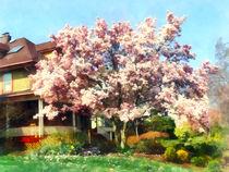 Magnolia Near Green House by Susan Savad