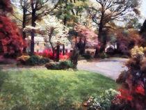 Spring in the Neighborhood by Susan Savad