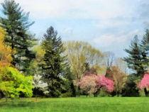 Spring Landscape by Susan Savad