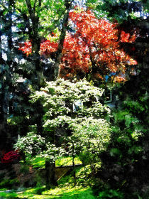 Fa-springtrees2