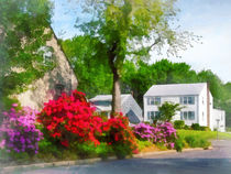 Suburban Azalea Garden von Susan Savad