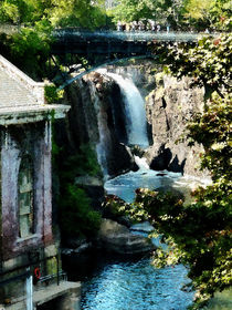 Paterson Falls by Susan Savad