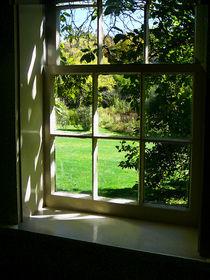 Summer Day Through the Window by Susan Savad