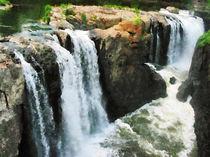 Waterfall Paterson NJ by Susan Savad