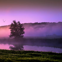 Herbstmorgen // colorful morning von Marcus Hennen
