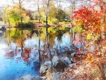 Autumn Lake by Susan Savad