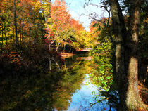 Fa-autumnparkwithbridge2