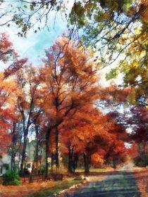 Fa-autumnstreetperspective