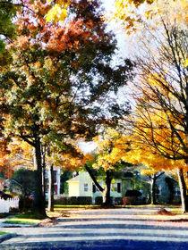 Fa-autumnstreetwithyellowhouse2