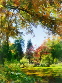 Sig2-autumnvista