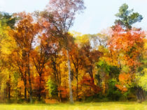 Row of Autumn Trees by Susan Savad