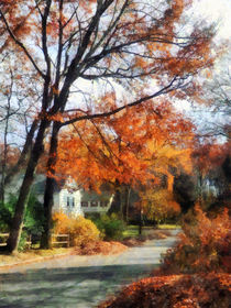 Suburban Street in Autumn by Susan Savad