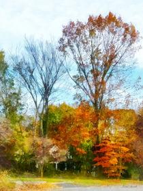 Tall Autumn Trees von Susan Savad