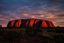 Sunset at Uluru / Ayers Rock by Belinda Philipp