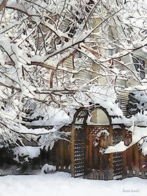 Garden Gate in Winter by Susan Savad