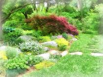 Fa-gardenwithjapanesemaple