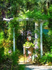 Hidden Garden by Susan Savad