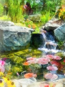 Koi Pond von Susan Savad