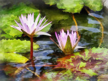 Two Purple Water Lotus von Susan Savad
