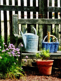 Watering Can and Blue Basket by Susan Savad