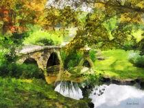 Sunlit Bridge in Park by Susan Savad