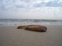 Strandgut von Eike Holtzhauer