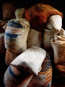 Sacks of Feed von Susan Savad
